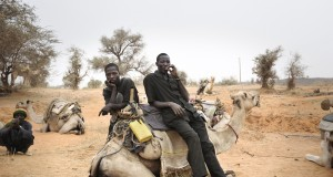 Inside Niger, Nicola lo Calzo