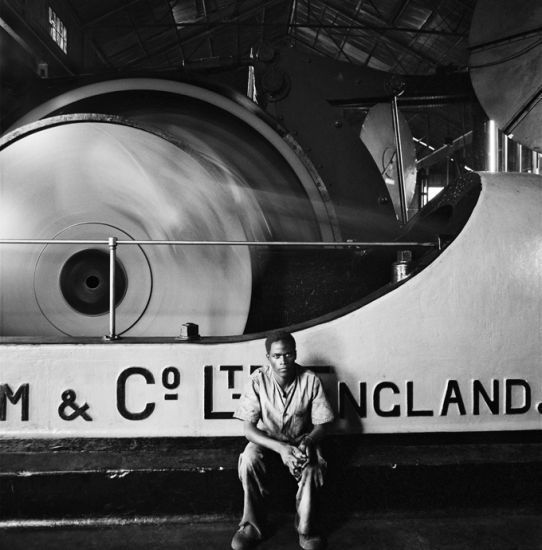 David Goldblatt, Foto/Industria