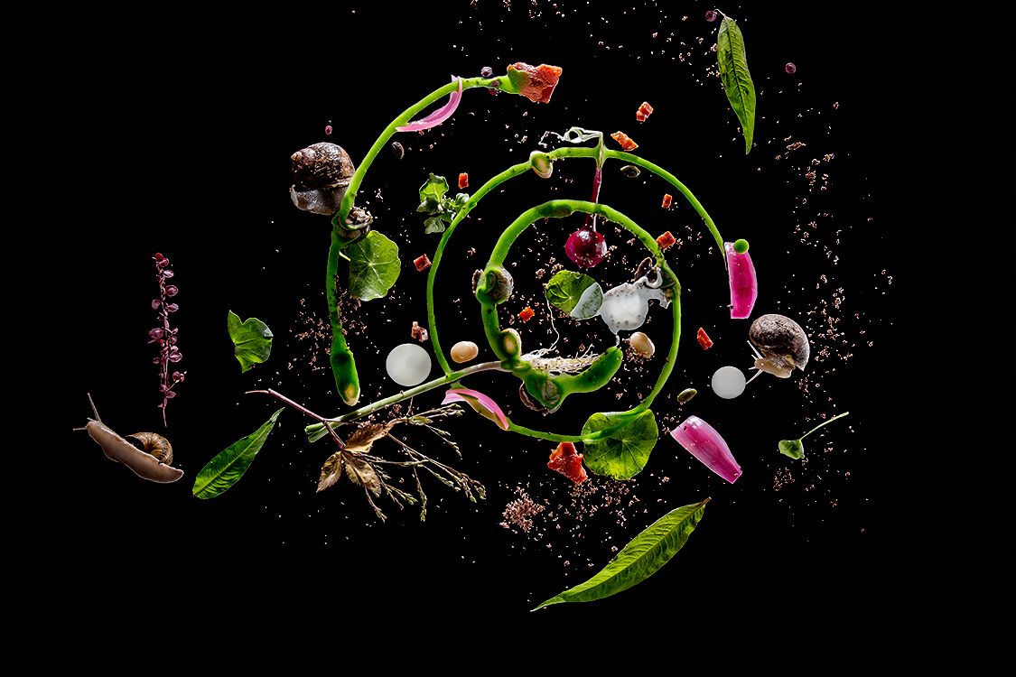 escargots-anthony-florio