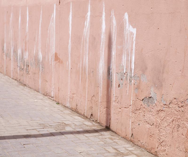 La jeunesse de Marrakech