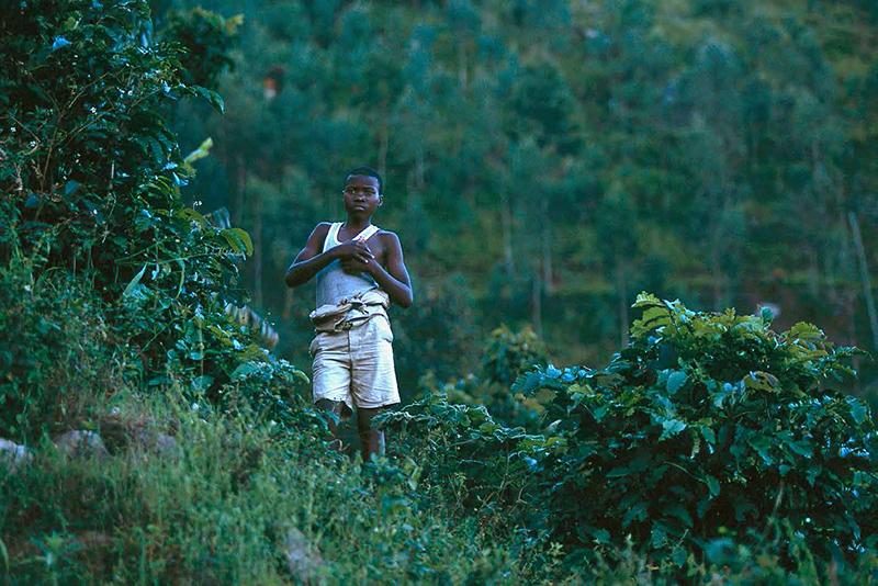 04_Destin-Rwandais