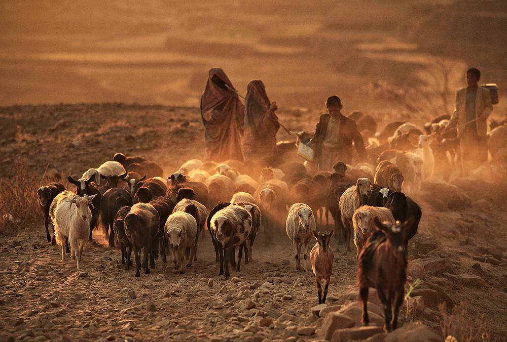 Thula, Yemen © Matjaz Krivic