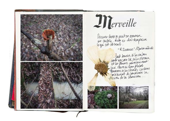 Adelap, Histoires Naturelles (via)