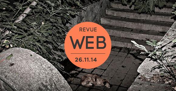 Revue Web   26.11.14