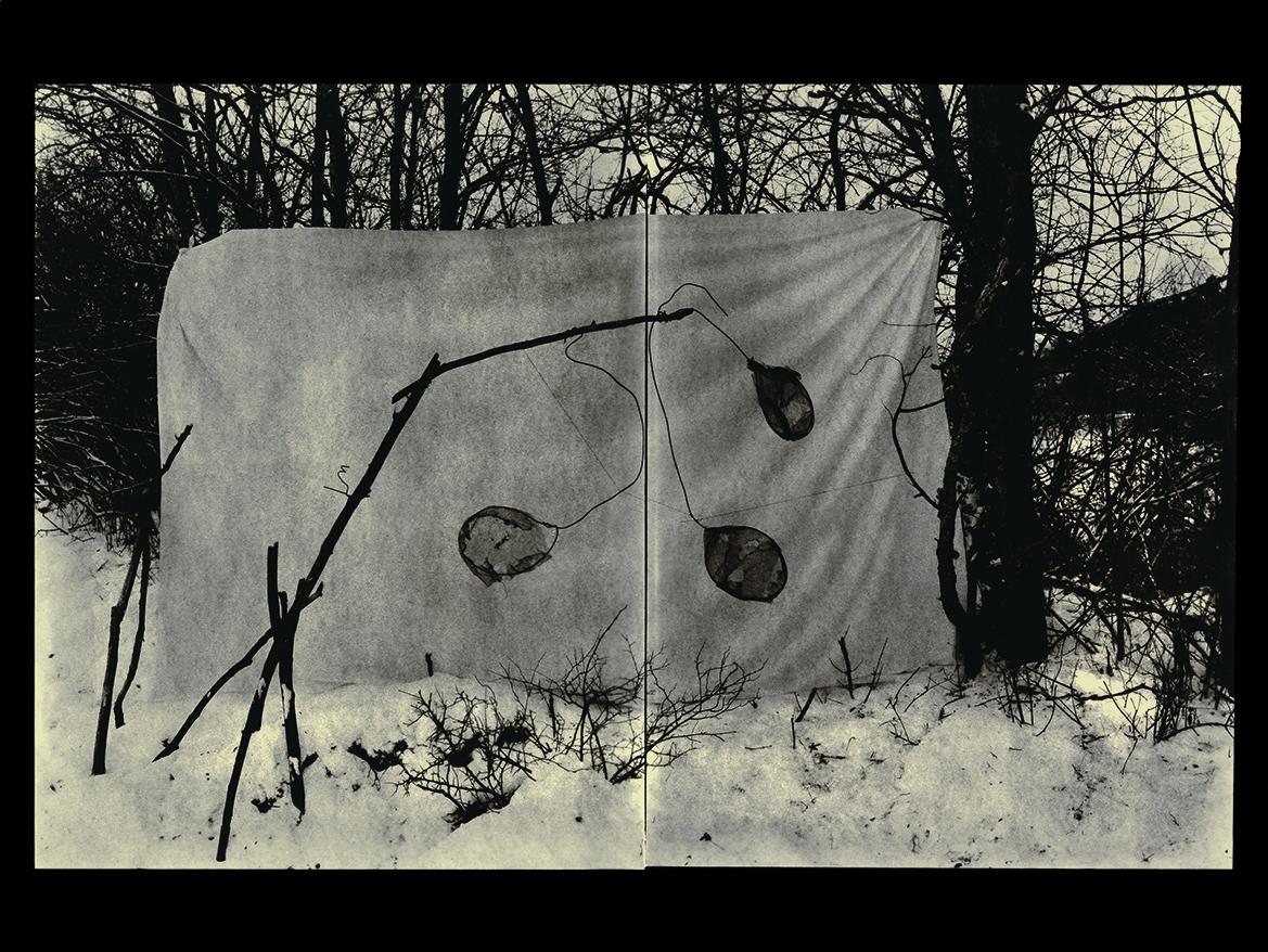 laurent-millet-filigranes-06