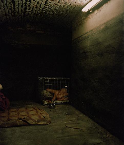 Maître Doberman et Clara la Chienne, sa femme, reçoivent des invités dans cet immeuble qui semble abandonné, dans le quartier de Marchienne au Pont. Dans cette image, il confronte sa femme à ses peurs.