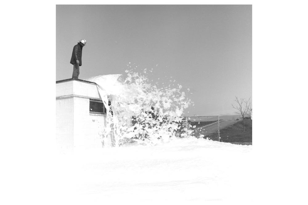 david-fathi-wolfgang-11