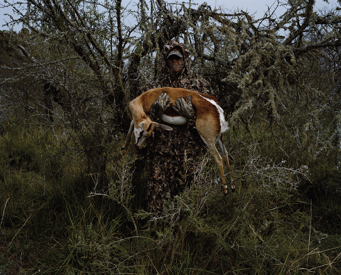 untitled hunter with springbok # I, eastern cape, south africa
