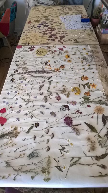 Marie Delagnes, l'herbier pour la série Bloom